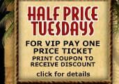 Tuesday Adventure Park Offer